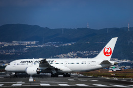 miny_poodleさんが、伊丹空港で撮影した日本航空 787-8 Dreamlinerの航空フォト(飛行機 写真・画像)