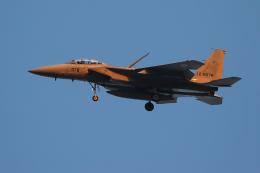 スカルショットさんが、岐阜基地で撮影した航空自衛隊 F-15DJ Eagleの航空フォト(飛行機 写真・画像)