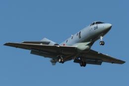 木人さんが、茨城空港で撮影した航空自衛隊 U-125A(Hawker 800)の航空フォト(飛行機 写真・画像)