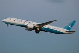 じゃがさんが、成田国際空港で撮影した厦門航空 787-9の航空フォト(飛行機 写真・画像)