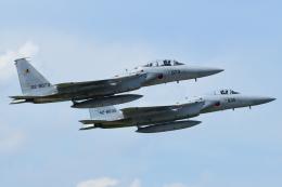 841さんが、新田原基地で撮影した航空自衛隊 F-15DJ Eagleの航空フォト(飛行機 写真・画像)
