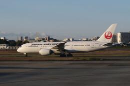 職業旅人さんが、伊丹空港で撮影した日本航空 787-8 Dreamlinerの航空フォト(飛行機 写真・画像)