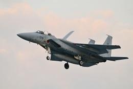 masahiさんが、岐阜基地で撮影した航空自衛隊 F-15DJ Eagleの航空フォト(飛行機 写真・画像)
