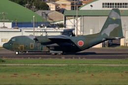 walker2000さんが、名古屋飛行場で撮影した航空自衛隊 C-130H Herculesの航空フォト(飛行機 写真・画像)