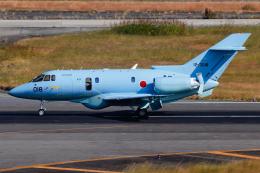 A.Tさんが、名古屋飛行場で撮影した航空自衛隊 U-125A(Hawker 800)の航空フォト(飛行機 写真・画像)