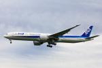 かっちゃん✈︎さんが、成田国際空港で撮影した全日空 777-381/ERの航空フォト(飛行機 写真・画像)