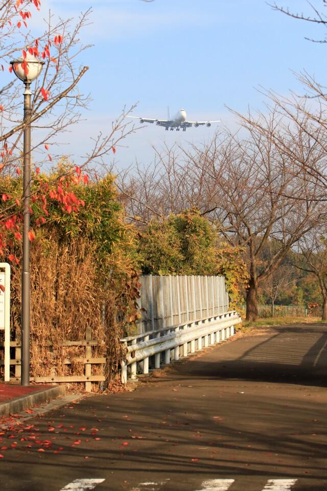☆ライダーさんが、成田国際空港で撮影したアトラス航空 747-4B5F/ER/SCDの航空フォト(飛行機 写真・画像)