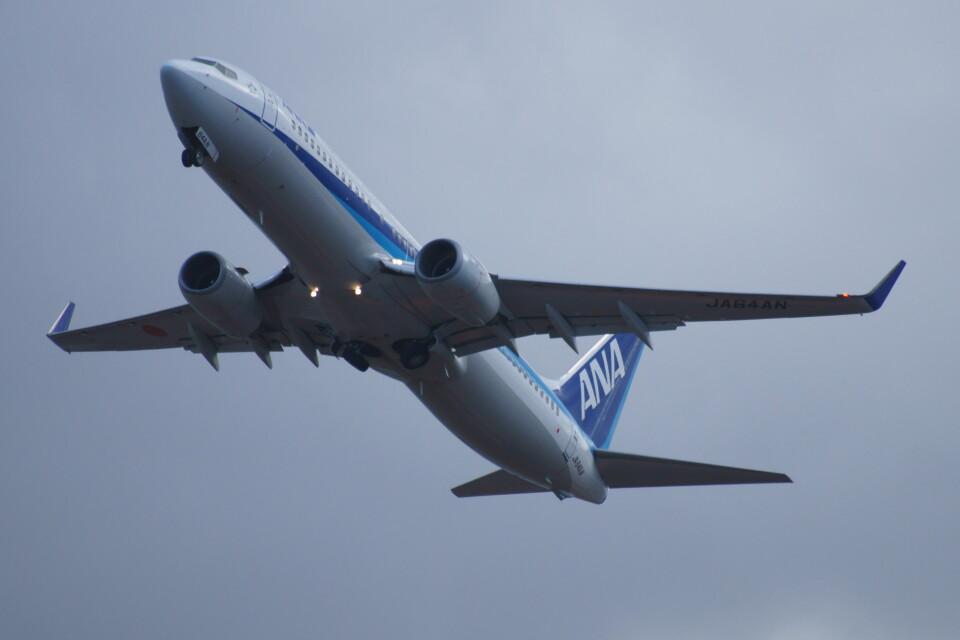 kij niigataさんの全日空 Boeing 737-800 (JA64AN) 航空フォト