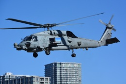 storyさんが、東京臨海広域防災公園ヘリポートで撮影したアメリカ海軍 MH-60R Seahawk (S-70B)の航空フォト(飛行機 写真・画像)
