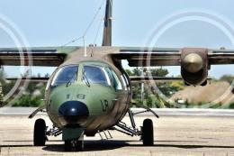 wetwingさんが、木更津飛行場で撮影した陸上自衛隊 LR-1の航空フォト(飛行機 写真・画像)