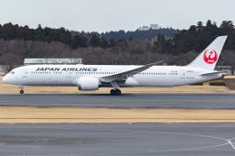 KoshiTomoさんが、成田国際空港で撮影した日本航空 787-9の航空フォト(飛行機 写真・画像)