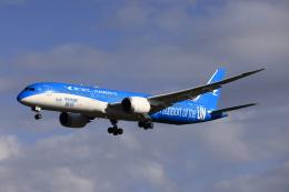 """ニヤン""""さよなら岡山県""""さんが、成田国際空港で撮影した厦門航空 787-9の航空フォト(飛行機 写真・画像)"""