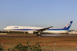 singapore346さんが、伊丹空港で撮影した全日空 777-381の航空フォト(飛行機 写真・画像)