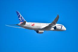 EY888さんが、成田国際空港で撮影したLOTポーランド航空 787-8 Dreamlinerの航空フォト(飛行機 写真・画像)