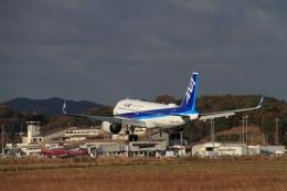 LEVEL789さんが、岡山空港で撮影した全日空 A320-271Nの航空フォト(飛行機 写真・画像)