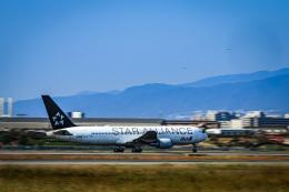 miny_poodleさんが、伊丹空港で撮影した全日空 767-381/ERの航空フォト(飛行機 写真・画像)