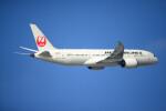 brasovさんが、羽田空港で撮影した日本航空 787-8 Dreamlinerの航空フォト(飛行機 写真・画像)