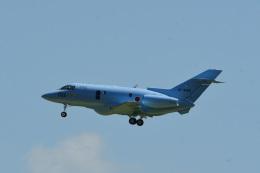 rangeroverさんが、成田国際空港で撮影した航空自衛隊 U-125A(Hawker 800)の航空フォト(飛行機 写真・画像)