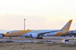 mild lifeさんが、関西国際空港で撮影したスクート 787-9の航空フォト(飛行機 写真・画像)