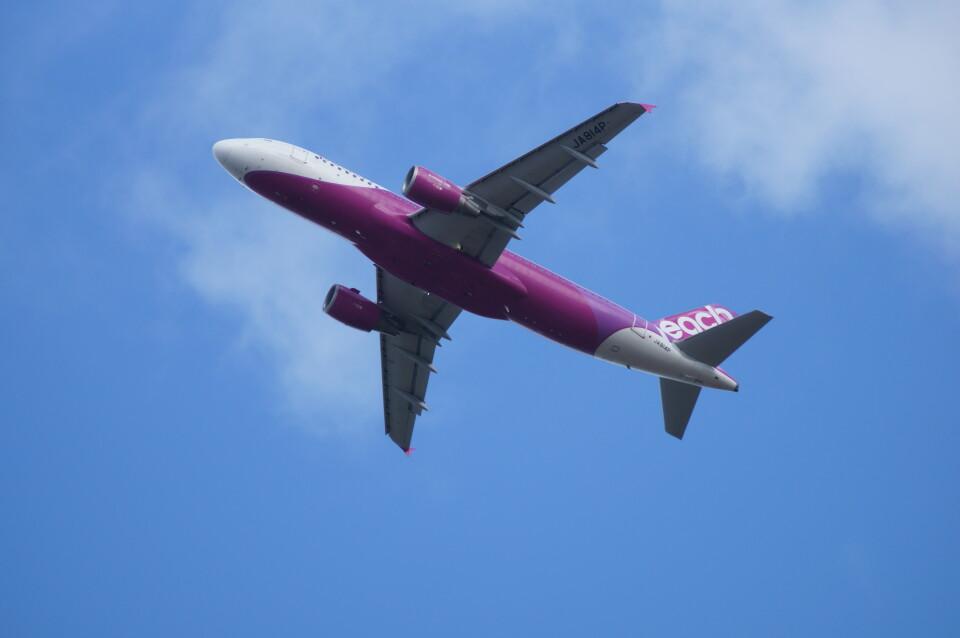 kij niigataさんのピーチ Airbus A320 (JA814P) 航空フォト