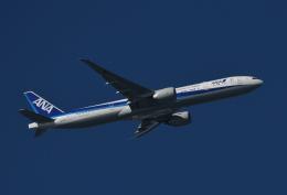 チャーリーマイクさんが、羽田空港で撮影した全日空 777-381/ERの航空フォト(飛行機 写真・画像)
