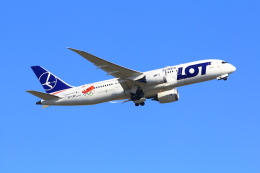 35GK17さんが、成田国際空港で撮影したLOTポーランド航空 787-8 Dreamlinerの航空フォト(飛行機 写真・画像)