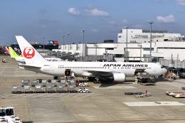M.airphotoさんが、福岡空港で撮影した日本航空 767-346/ERの航空フォト(飛行機 写真・画像)