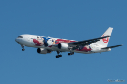 みなかもさんが、羽田空港で撮影した日本航空 767-346/ERの航空フォト(飛行機 写真・画像)