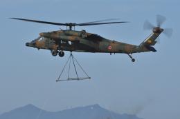 sepia2016さんが、霞ヶ浦飛行場で撮影した陸上自衛隊 UH-60JAの航空フォト(飛行機 写真・画像)
