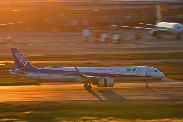 Souma2005さんが、羽田空港で撮影した全日空 A321-272Nの航空フォト(飛行機 写真・画像)