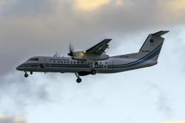 K.Sさんが、羽田空港で撮影した海上保安庁 DHC-8-315 Dash 8の航空フォト(飛行機 写真・画像)