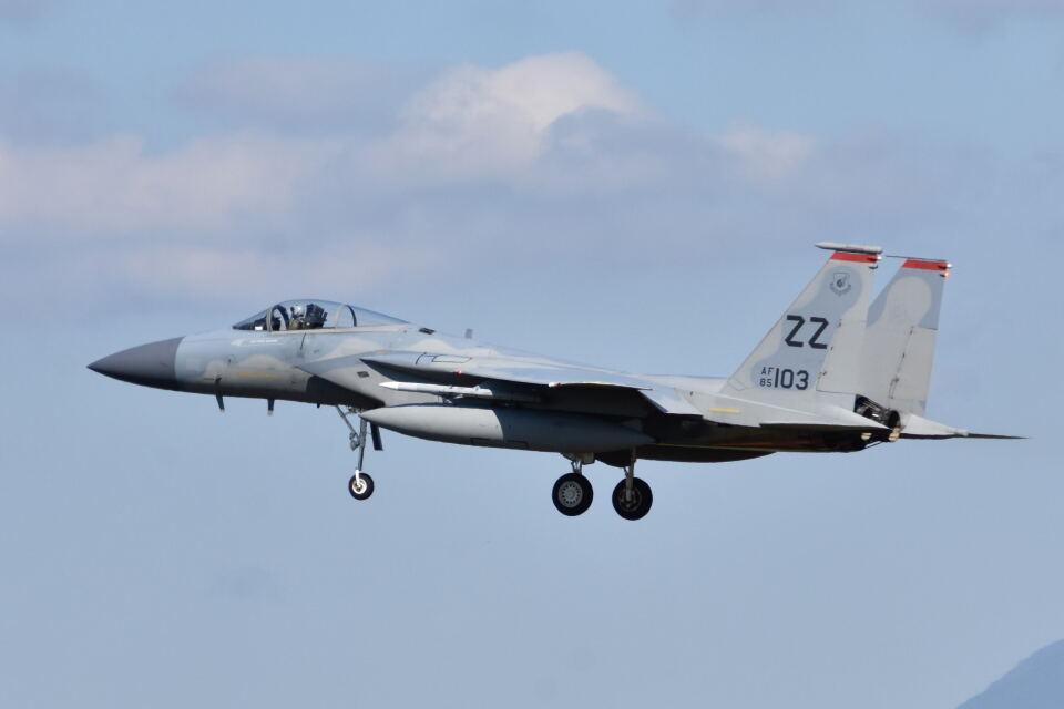 ワイエスさんのアメリカ空軍 McDonnell Douglas F-15 A/B/C/D/E (85-0103) 航空フォト