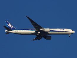 丸めがねさんが、羽田空港で撮影した全日空 777-381/ERの航空フォト(飛行機 写真・画像)