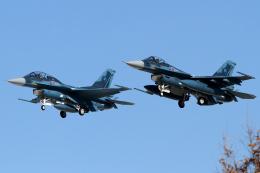 Hariboさんが、岐阜基地で撮影した航空自衛隊 F-2Aの航空フォト(飛行機 写真・画像)