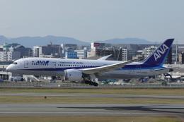 DBACKさんが、福岡空港で撮影した全日空 787-8 Dreamlinerの航空フォト(飛行機 写真・画像)