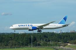 神宮寺ももさんが、成田国際空港で撮影したユナイテッド航空 787-9の航空フォト(飛行機 写真・画像)