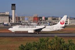 mild lifeさんが、伊丹空港で撮影した日本航空 737-846の航空フォト(飛行機 写真・画像)