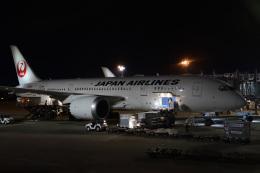 TOY2011さんが、伊丹空港で撮影した日本航空 787-8 Dreamlinerの航空フォト(飛行機 写真・画像)