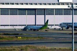 まいけるさんが、羽田空港で撮影した春秋航空日本 737-8ALの航空フォト(飛行機 写真・画像)