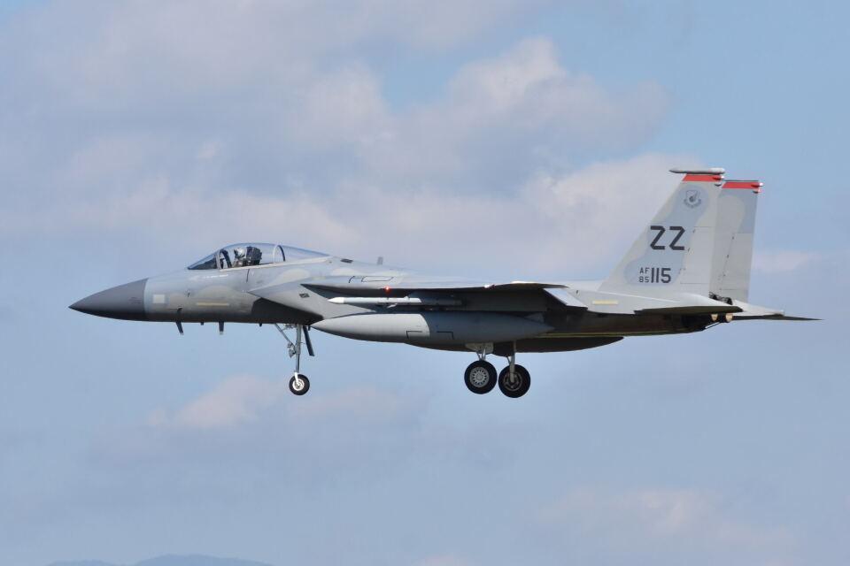 ワイエスさんのアメリカ空軍 McDonnell Douglas F-15 A/B/C/D/E (85-0115) 航空フォト