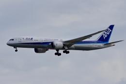 kaeru6006さんが、羽田空港で撮影した全日空 787-9の航空フォト(飛行機 写真・画像)