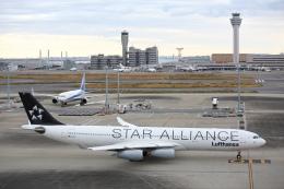 安芸あすかさんが、羽田空港で撮影したルフトハンザドイツ航空 A340-313Xの航空フォト(飛行機 写真・画像)