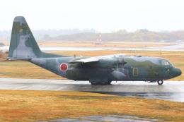 ちゅういちさんが、入間飛行場で撮影した航空自衛隊 C-130H Herculesの航空フォト(飛行機 写真・画像)
