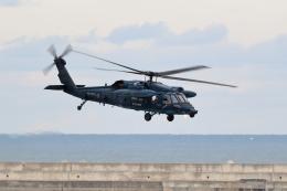 TAKAHIDEさんが、新潟空港で撮影した航空自衛隊 UH-60Jの航空フォト(飛行機 写真・画像)