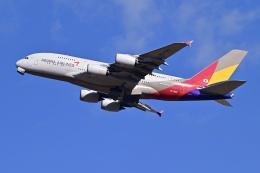 航空フォト:HL7625 アシアナ航空 A380
