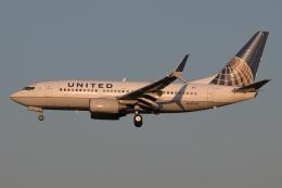 じゃがさんが、成田国際空港で撮影したユナイテッド航空 737-724の航空フォト(飛行機 写真・画像)