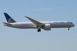 じゃがさんが、成田国際空港で撮影したユナイテッド航空 787-9の航空フォト(飛行機 写真・画像)