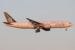 じゃがさんが、成田国際空港で撮影したユナイテッド航空 777-224/ERの航空フォト(飛行機 写真・画像)