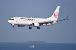 kumagorouさんが、那覇空港で撮影した日本航空 737-846の航空フォト(飛行機 写真・画像)