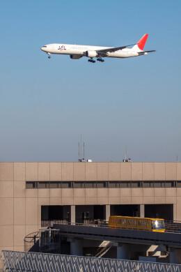 Kaaazさんが、成田国際空港で撮影した日本航空 777-346/ERの航空フォト(飛行機 写真・画像)
